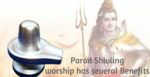 Parad Shivling worship has several Benefits